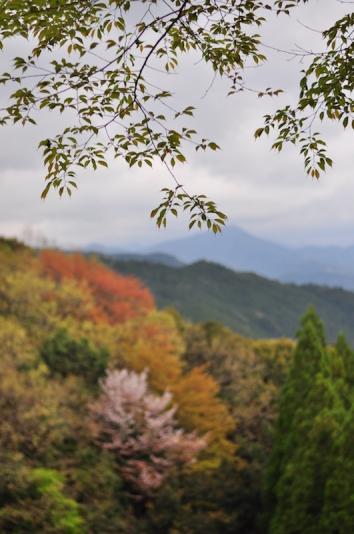 Kumano Kodō 熊野古道, Japan